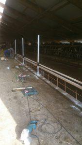 voerhek-renovatie-koeien-stal-bouwbedrijf-scheenstra